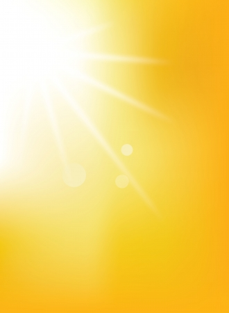 Summer background with a magnificent summer sun burst Vector