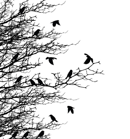 birch forest: tree silhouette with bird fly