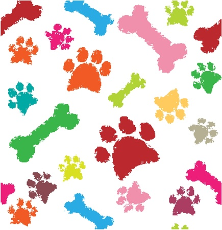 bear footprints: Background with dog paw print and bone