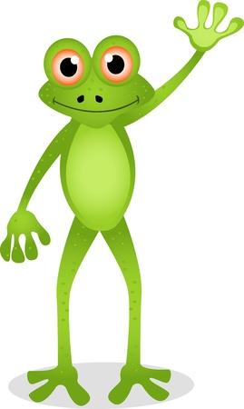 dessin animé grenouille drôle