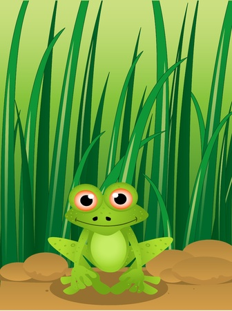 illustration of a cute cartoon frog with grass background Vector