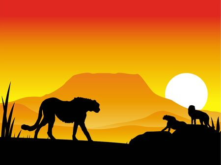 rapidity: cheetahs silhouette illustration with background scenery Illustration