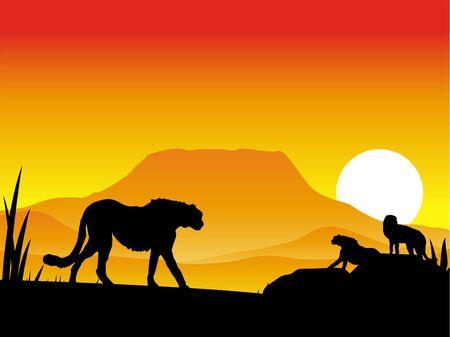 celerity: guepardos silueta ilustraci�n con un paisaje de fondo