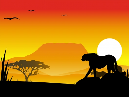 quickness: cheetahs silhouette illustration with background scenery Illustration