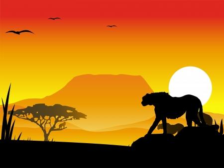 jaguar: guepardos silueta ilustración con un paisaje de fondo