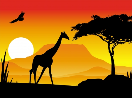 giraffe silhouette illustration with background scenery Vector