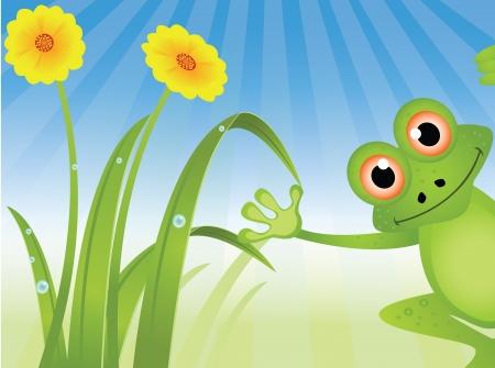 tree frogs: ilustraci�n de una rana linda de la historieta con el fondo de la hierba Vectores
