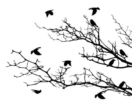 bomen zwart wit: Boom silhouet met vogel vliegen