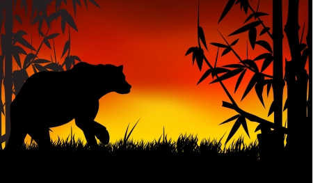 grizzly: bear silhouette