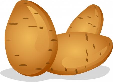 raw potato: potato