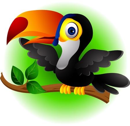 Dessin animé oiseau Toucan