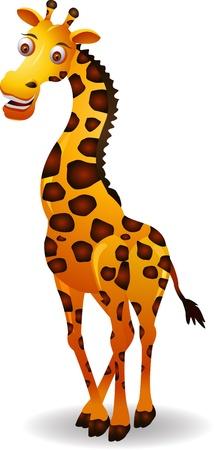 jirafa de dibujos animados aislado