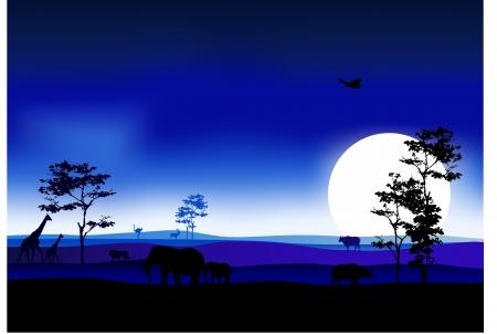 backlit: silhouetten van fauna en flora