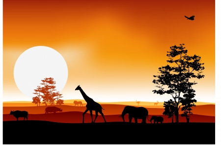 silhouettes of fauna and flora Vector