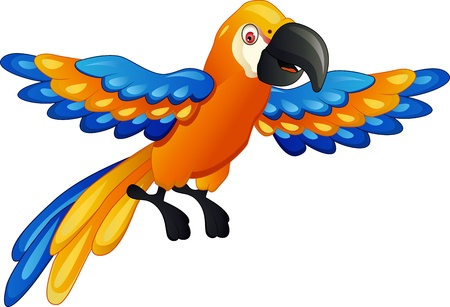 Funny parrot cartoon  Stock Vector - 14508802