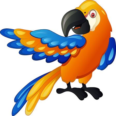 cartoon parrot: Funny parrot cartoon