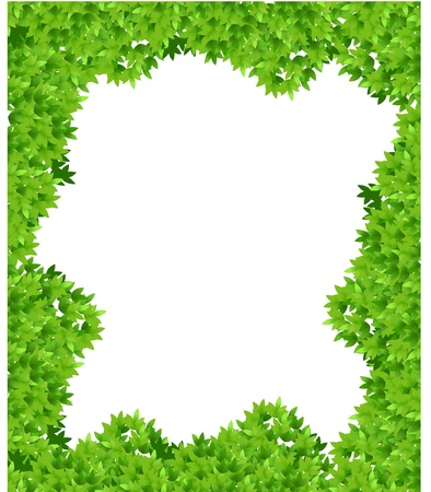 magical forest: leaf background