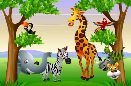 selva: Divertido safari de animales de dibujos animados Vectores