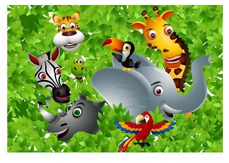 Funny safari animal cartoon  Vector