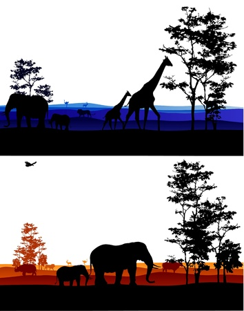 Africa silhouette background  Vector