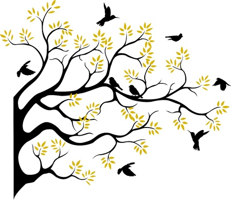 birch forest: beautiful tree silhouette with bird flying