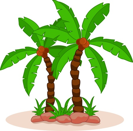 bole: palm tree Illustration