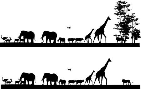 silhouettes elephants: Safari silueta de los animales Vectores