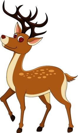 venado: de dibujos animados ciervos lindos Vectores