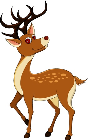 red deer: cute deer cartoon