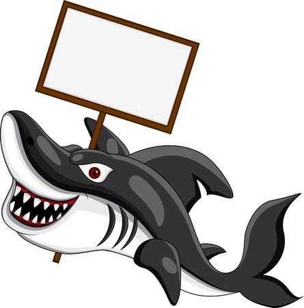 shark teeth: tibur�n enojado con muestra en blanco