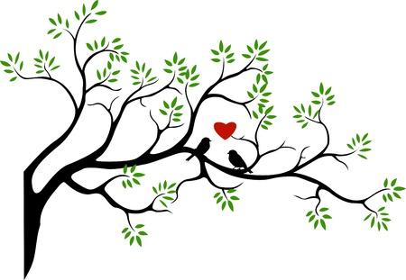 silueta del árbol con la pareja del pájaro del amor