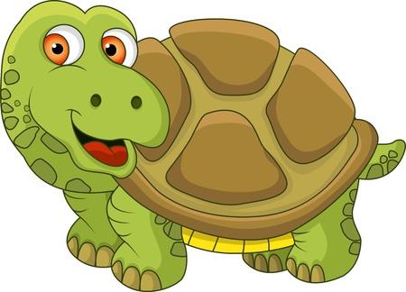 tortuga caricatura: Tortuga de dibujos animados Vectores