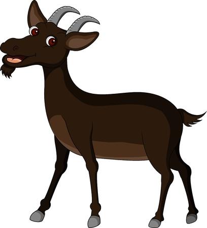 billy: goat cartoon Illustration
