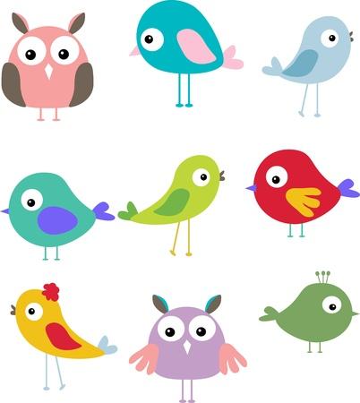pajaro dibujo: Conjunto de diferentes aves lindos.