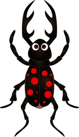 escarabajo: dibujos animados escarabajo en el fondo blanco Vectores