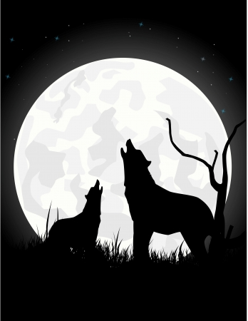 The wolf howls on the moon at night Vector