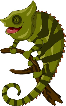 chameleon cartoon Vector