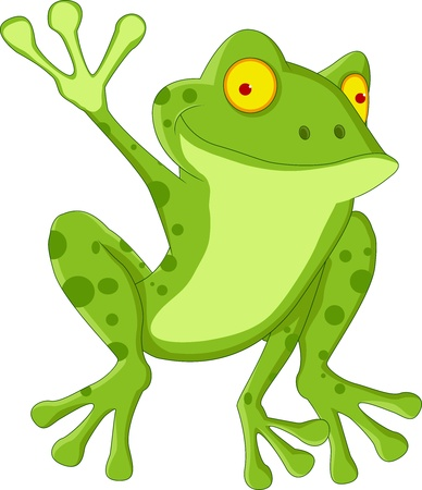 amphibious: happy frog cartoon Illustration
