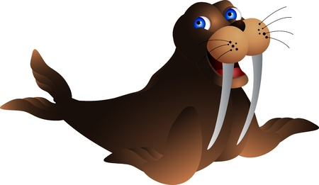 cute walrus Vector