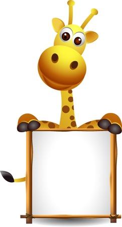 jirafa caricatura: jirafa de dibujos animados con la muestra en blanco Vectores