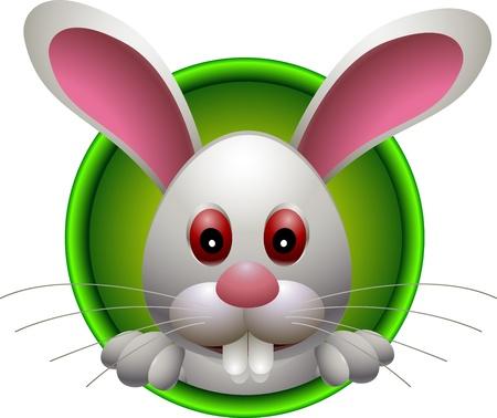liebre: cabeza de dibujos animados lindo conejo