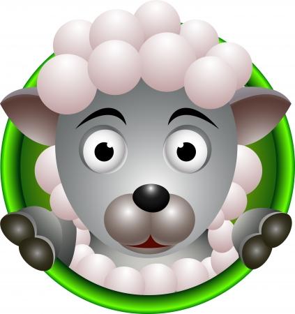and sheep: ovejas divertido de la historieta cabeza