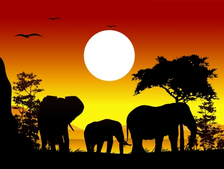 beauty elephant trip silhouettes with landscape background Vector