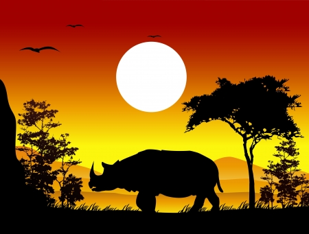 sunset lake: beauty rhino trip silhouettes with landscape background