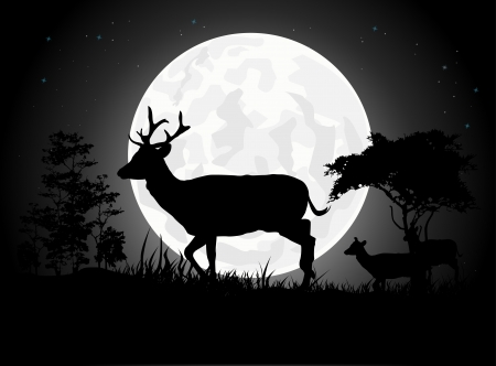 forest fire: Beautiful Deer silhouettes with giant moon background