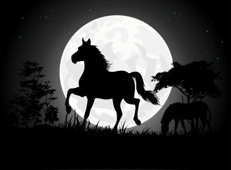 africa sunset: Sagome bel cavallo con sfondo la luna gigante