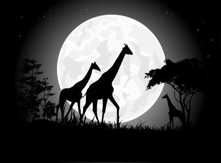 Beautiful Giraffe family silhouettes with giant moon background Vector