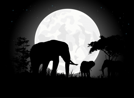 Beautiful Elephant family silhouettes with giant moon background Vector