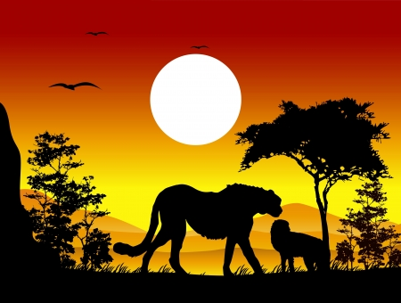 beauty cheetah silhouettes with landscape background Vector