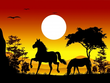 lake of the woods: beauty horse silhouettes with landscape background Illustration
